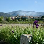 Discover More about Provence, private trip in provence