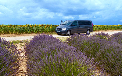 Tailor made travel provence