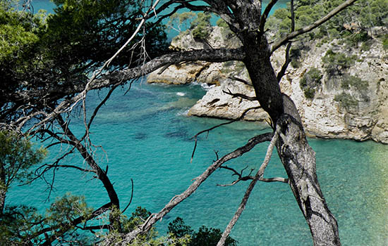 Private and exclusive journey in South of France
